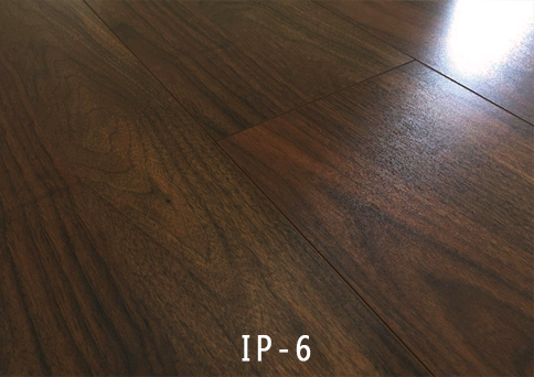 外贸IP-6