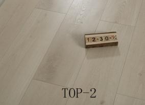 外贸TOP-2