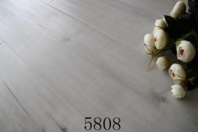 活性炭5808